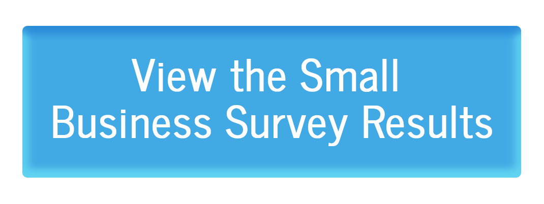 , Small Business Survey Results