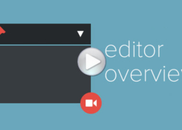 WP Editor Overview
