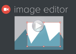 WP The Image Editor