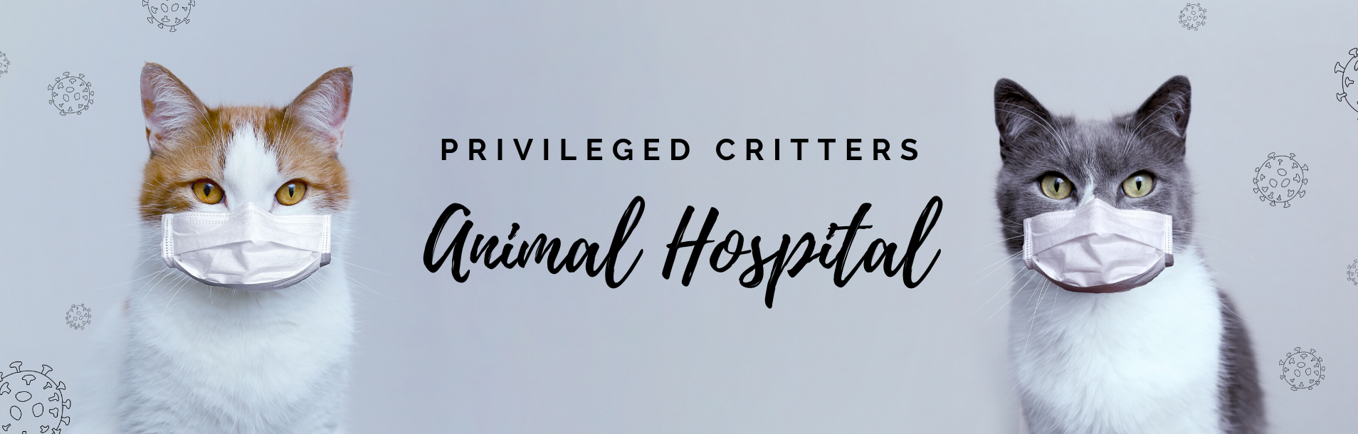 , Insider: Privileged Critters Animal Hospital | Deals
